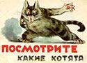 Посмотрите какие котята